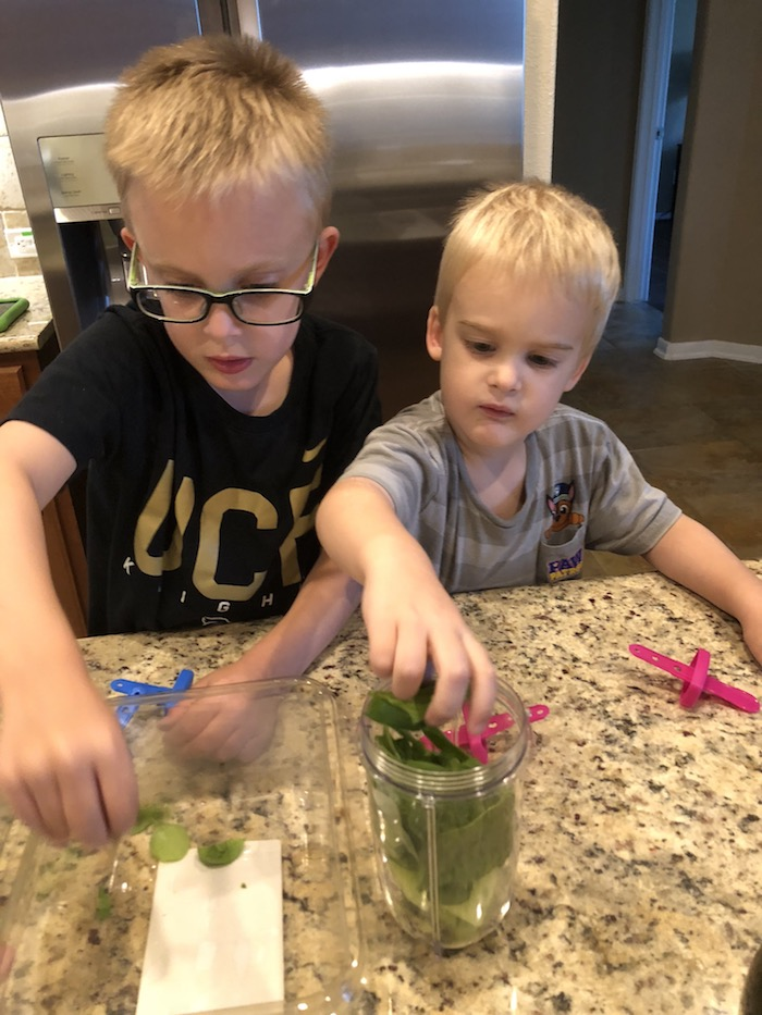 Two young boys adding ingredients to a blender cup