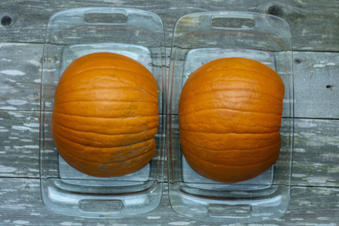 Two large glass baking dishes with half of a pumpkin in each, with the flesh side facing down, on a wooden surface